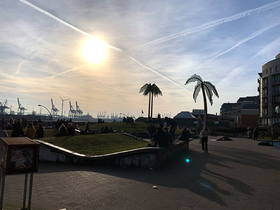 Palmen in Hamburg