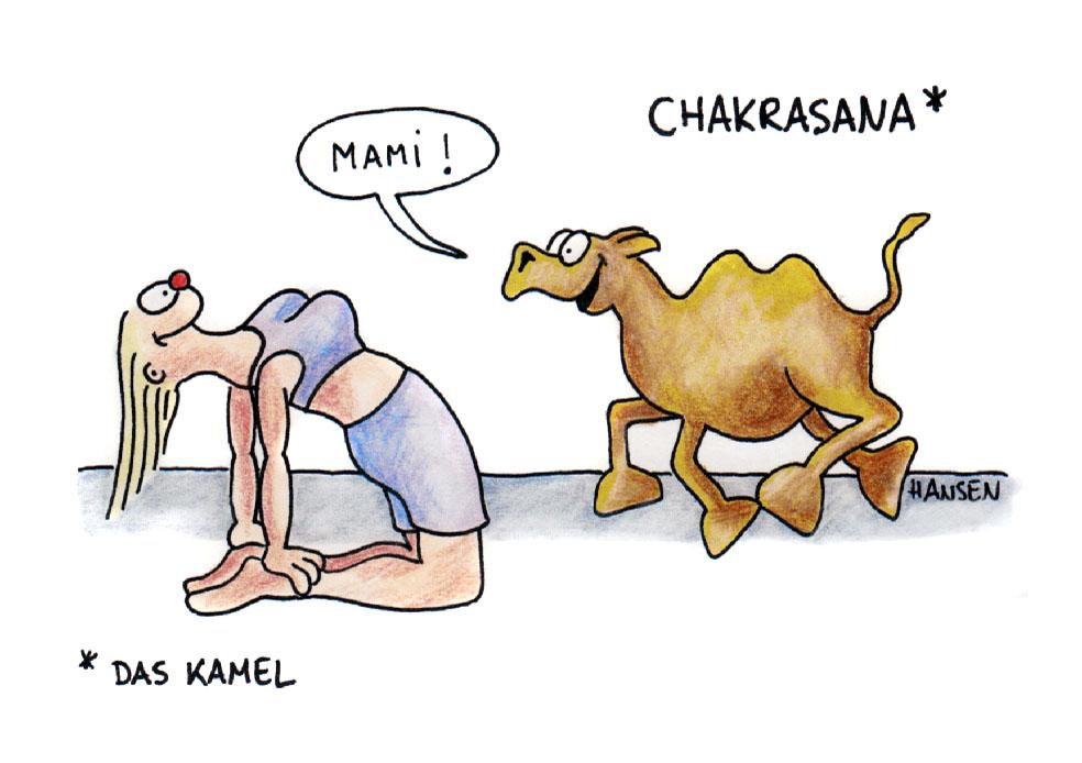 Chakrasana, das Kamel